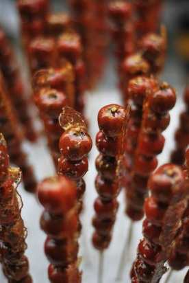Hawthorne Berries - Version 2