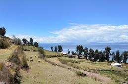Peru_10_2014_2507
