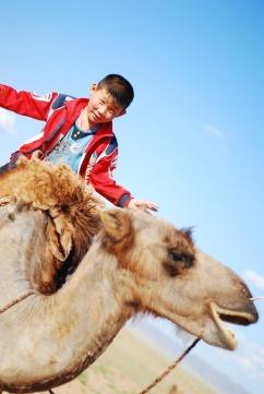riding camel