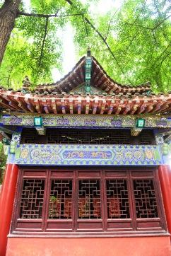 China_2015_001561
