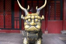 China_2015_001696