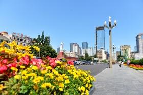 China_2015_003753