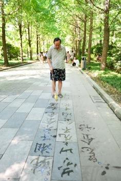 China_2015_004105