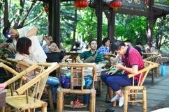 China_2015_004306
