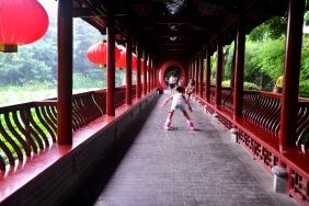 China_2015_004949