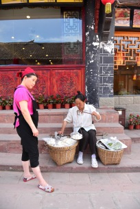 China_2015_005301