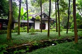 China_2015_007626