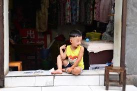 China_2015_008263
