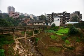 China_2015_011763
