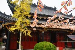 China_2015_013923