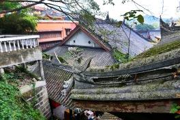 China_2015_014255