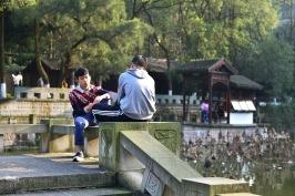 China_2015_014993