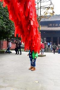 China_2016_015932