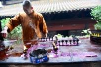 China_2016_016046