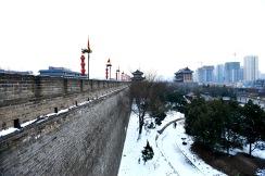 China_2016_018137