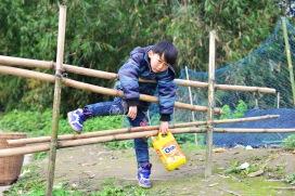 China_2016_020610