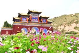 China_2016_029857