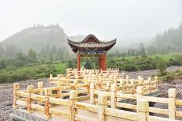 China_2016_029981