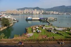 China_2016_033570