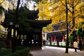 China_2016_034131