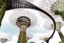 Singapore_2017_0542