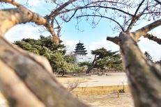 South_Korea_2016_333